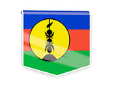 Flag label of new caledonia
