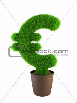 growing euro symbol