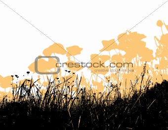 Black grass with light orange poppy flowers. Vector