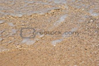 beach close up