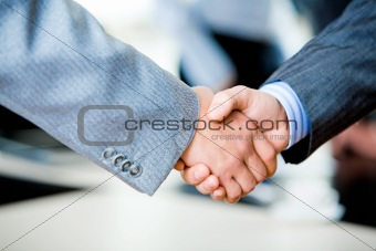 Handshake of businesspeople