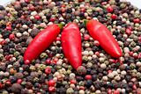 Peppercorns and Chillies
