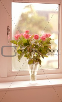 Pink roses - A bunch of flowers