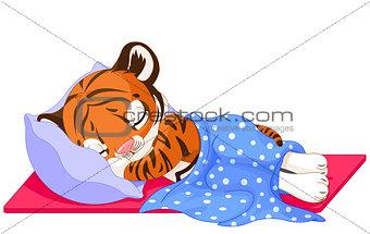 Cute Tiger Sleeping