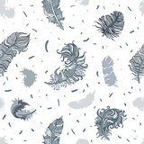Feathers. Seamless pattern