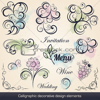 calligraphic decorative design elements