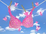 pink bra with pink ribbon butterflies