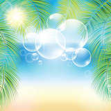 Bubbles above the sand beach and the palm branches at sunset time.