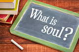 What is soul question on blackboard