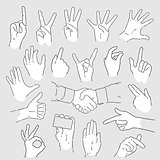 Set of Vector Hand