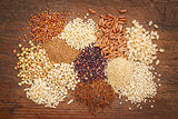 gluten free grains abstrtact