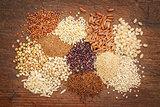 gluten free grains abstrtact