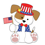 Cute Puppy Fourth of July