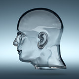 Empty glass transparent human head
