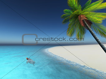 3D render of a turtle in  the sea palm tree beach