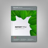 Brochures book or flyer with green leaves template