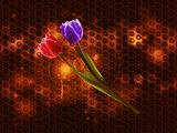 Tulips on glowing metallic honeycomb background