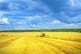 Harvester in work.