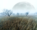 full moon scenery