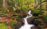 Gertelsbacher Waterfalls in autumn, Black Forest, Germany