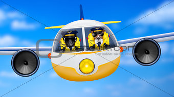 airplane pilot dogs