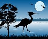 Stork on lake