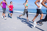 Friends doing jogging together