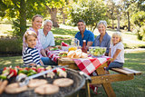 Happy family having picnic in the park