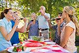 Happy seniors toasting with their family