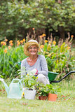 Happy grandmother gardening