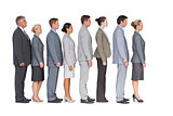 Business team standing in row