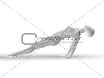 3D female figure with skeleton in yoga position