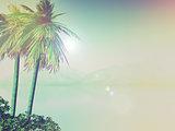 3D palm tree landscape with vintage effect