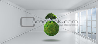 3D grassy globe and tree in empy room with windows
