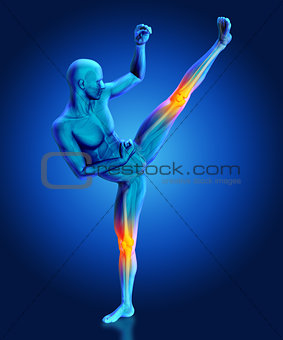 3D male figure in kick boxing pose with partial skeleton highlig