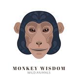 Monkey wisdom