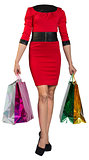 Woman body holding shopping bags