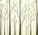 Trees 43