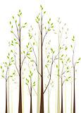 Trees 41