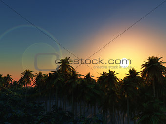 3D palm tree landscape at sunset