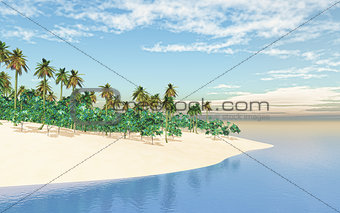3D tropical island in sea
