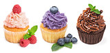 Collection of bright cupcakes with fresh berries isolated on whi