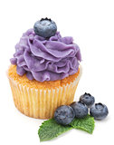 cupcake with fresh blueberry isolated on white