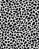 skin of leopard
