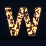 Glass glowing fire letter W symbol