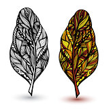 Decorative feathers. Hand drawn vector illustration