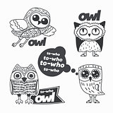 Owls design elements.