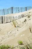 Fences on the beach