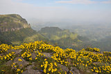 Simien mountains park