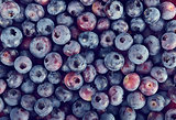 Background with Blueberries